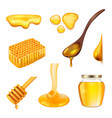 honey realistic yellow beeswax insects healthy vector image vector image