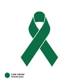 Liver Cancer ribbon vector image vector image