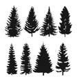 pine tree flat icon vector image vector image