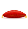red satin pillow vector image
