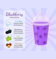 Smoothie recipe - blackberry cartoon flat style vector image
