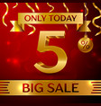 big sale five percent for discount vector image vector image