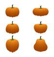cartoon pumpkin set vector image