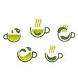 Herbal tea symbols vector image vector image