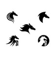 horse logo template icon vector image
