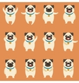 Set of flat pug dog icons vector image vector image