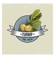 turnip vintage set of labels emblems or logo for vector image vector image