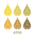 Autumn leaves vector image