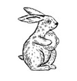 easter bunny with egg engraving vector image vector image