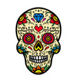 mexican sugar skull isolated on white background vector image vector image