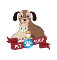 Pet shop center icon