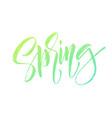 spring handwritten lettering beautiful modern vector image vector image