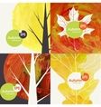 Autumnal Background Set vector image vector image