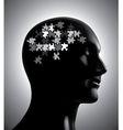 Brainstorm puzzle vector image vector image