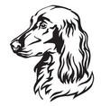 decorative portrait dog irish setter vector image vector image