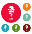 elm tree icons circle set vector image