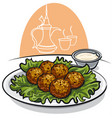 falafel with lettuce and sauce vector image