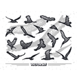 Set of birds silhouettes - flying sitting vector image