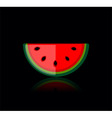 slice of water melon vector image vector image
