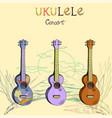 ukulele concert set vector image vector image