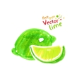 Child drawing of lime vector image vector image