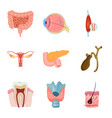 isolated object body and human sign set of vector image vector image