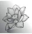 Lotus Flower sketch vector image