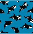 seamless pattern hand drawn killer whale vector image vector image