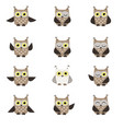 set of funny owls vector image