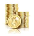bitcoin golden coins vector image