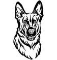 decorative portrait of dog shepherd vector image vector image