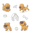 dog in different positions vector image vector image