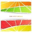 Four citrus background vector image vector image