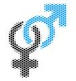 hexagon halftone heterosexual symbol icon vector image vector image