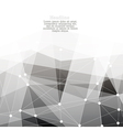 monochrome abstract background with copyspace vector image vector image