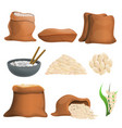 rice icons set cartoon style vector image vector image