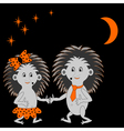 A couple of funny hedgehogs dating in the night vector image vector image