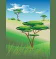 african savanna landscape vector image