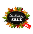 autumn sale signboard vector image vector image