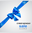 blue bow with diagonally ribbon and inscription vector image vector image