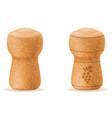 corkwood cork for champagne bottle vector image vector image