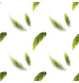 fresh green tea leaves seamless pattern vector image vector image