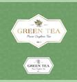 green tea logo seamless pattern label vector image