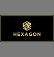 se hexagon logo design inspiration vector image vector image