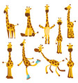 set cheerful funny giraffes with long neck vector image