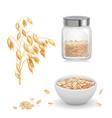 oats oat flakes in glass oatmeal and muesli