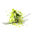 abstract biathlete from a splash of watercolor vector image vector image
