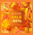 autumn sale -50 off icon vector image