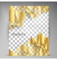 Beautiful Gold Satin Flyer vector image