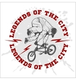 BMX rider - urban team design vector image vector image